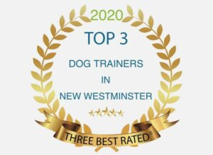 top 3 dog trainers in new west, 2020
