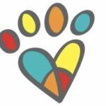 R+ Dog Training & Dog Daycare